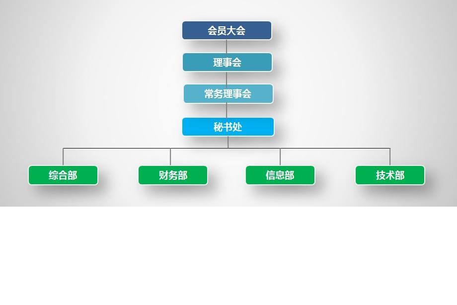 协会组织机构图.jpg